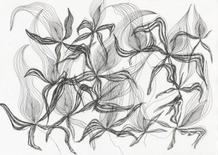 11_kukkia2_skissi