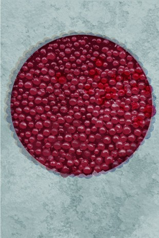 12-lingonberry-pie-2